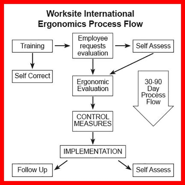Worksite International Ergonomics Process Flow